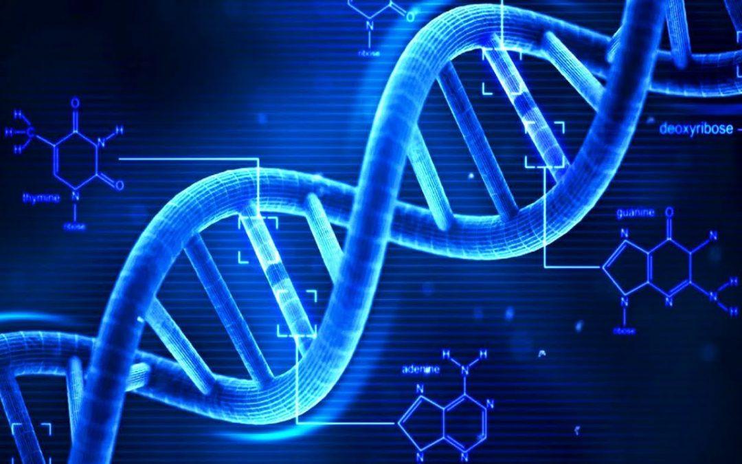 Lei autoriza que exame de DNA seja feito em parentes do suposto pai